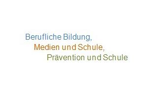 Berufliche Bildung, Medien und Schule, Prävention und Schule